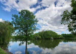 Dollard-Des-Ormeaux Parks